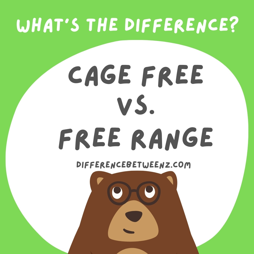 Difference between Cage Free and Free Range