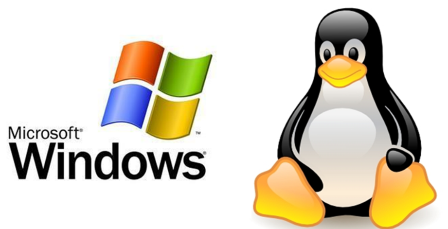 Difference between Linux and Home Windows Hosting