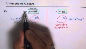 Difference between Algebra and Arithmetic