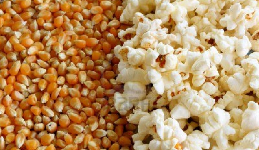 Difference between Corn and Popcorn