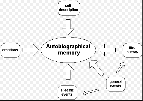 Difference between Memory and Autobiography