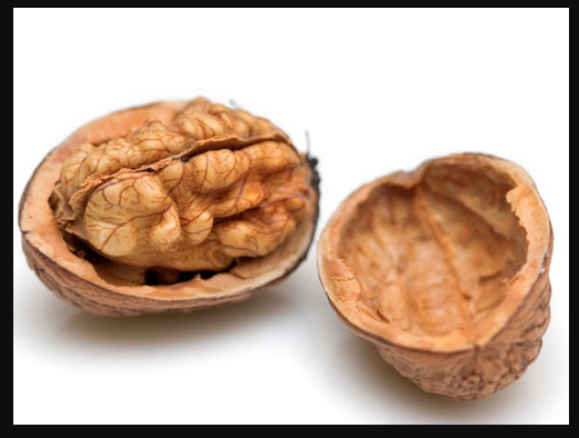 Difference between nuts and fruits