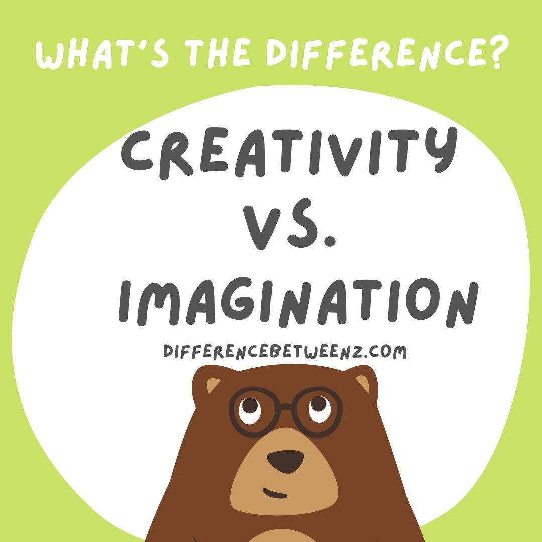 Difference between Imagination and imagination