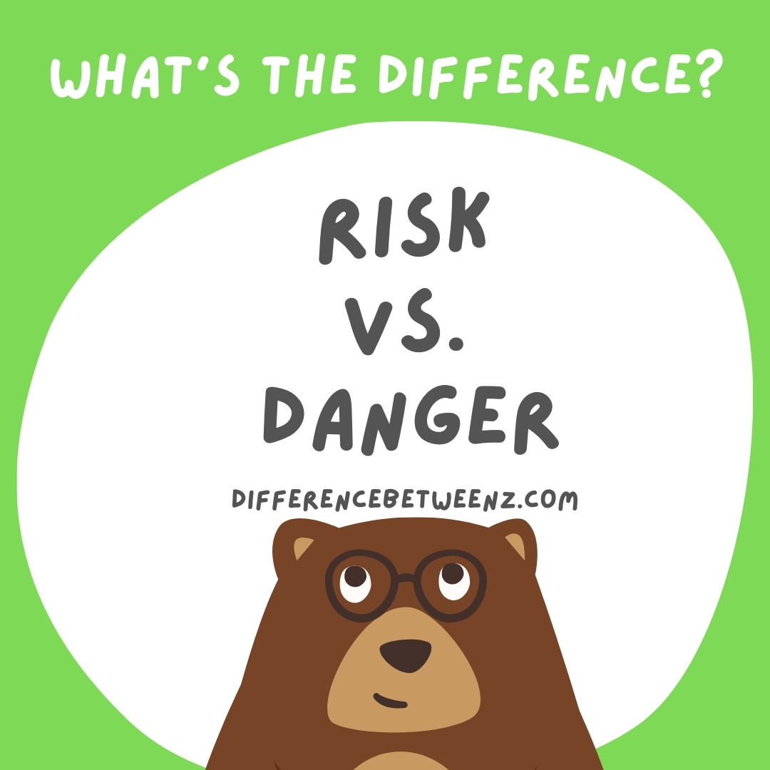 Difference between Risk and Danger