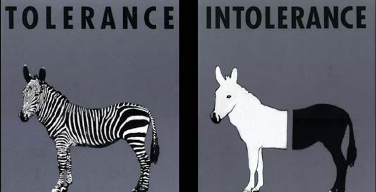 Difference between Tolerance and Intolerance