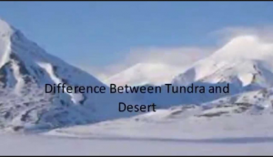 Difference between Tundra and Desert