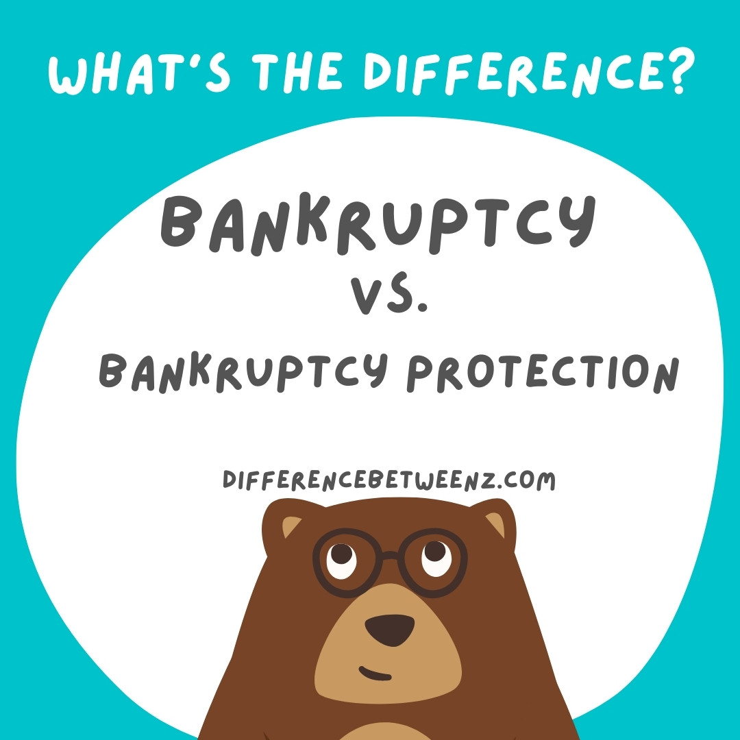 Bankruptcy and Bankruptcy protection