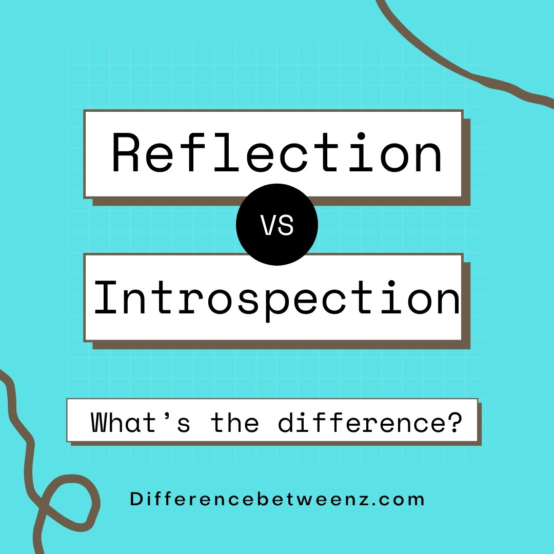 Difference between Reflection and Introspection