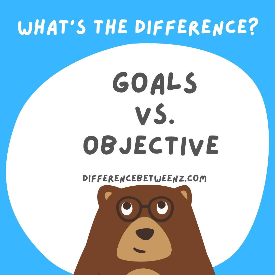What is Difference between Goals and Objectives