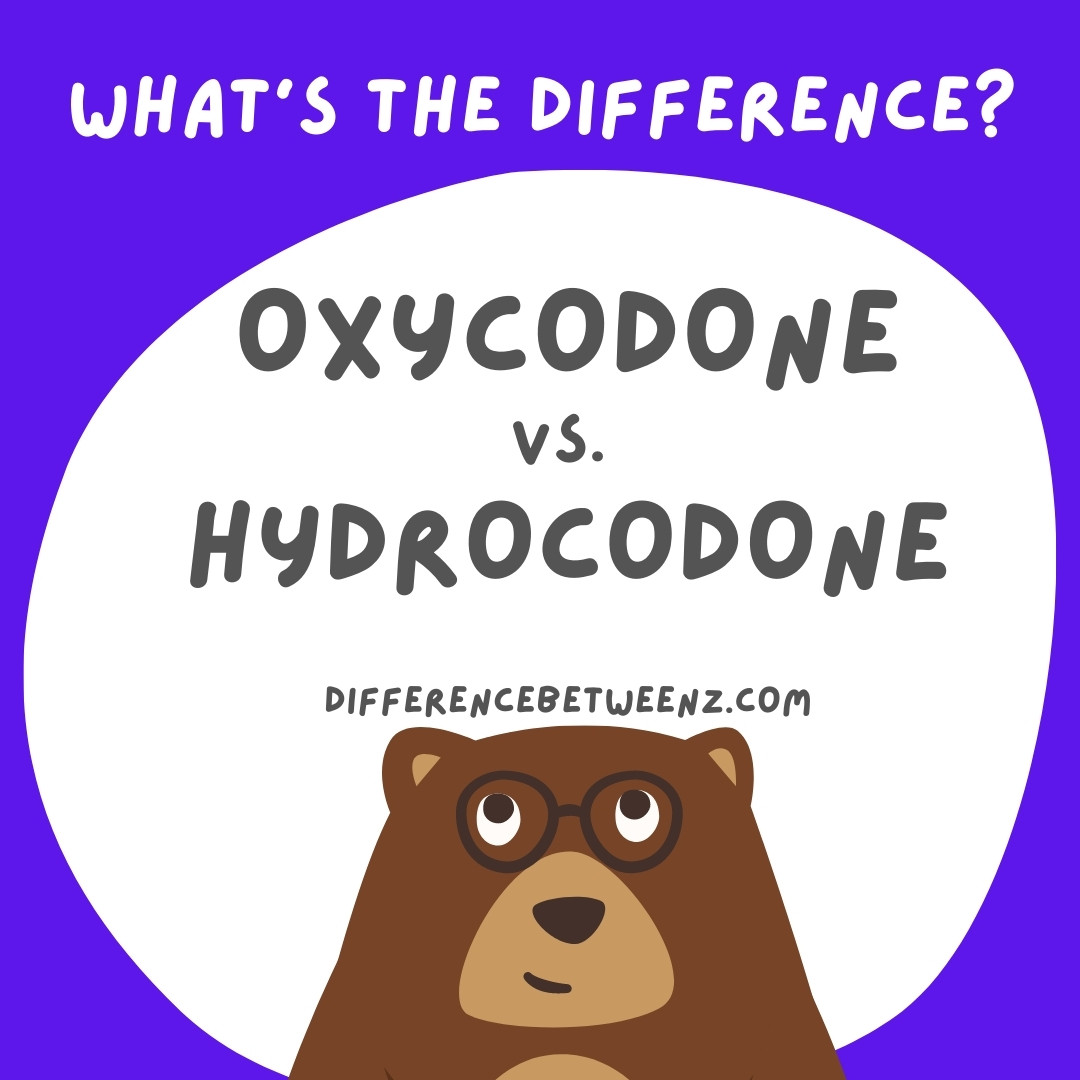 Difference-between-Oxycodone-and-Hydrocodone