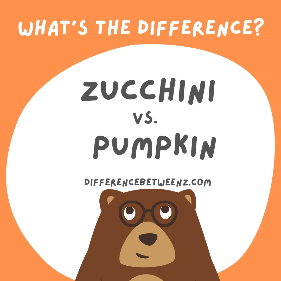 Difference between Zucchini and Pumpkin